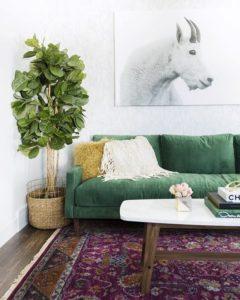 Green sofa in Eclectic Room