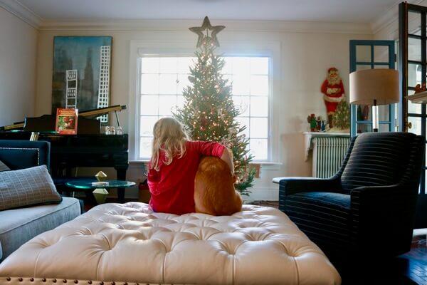 christmas tree decorationg