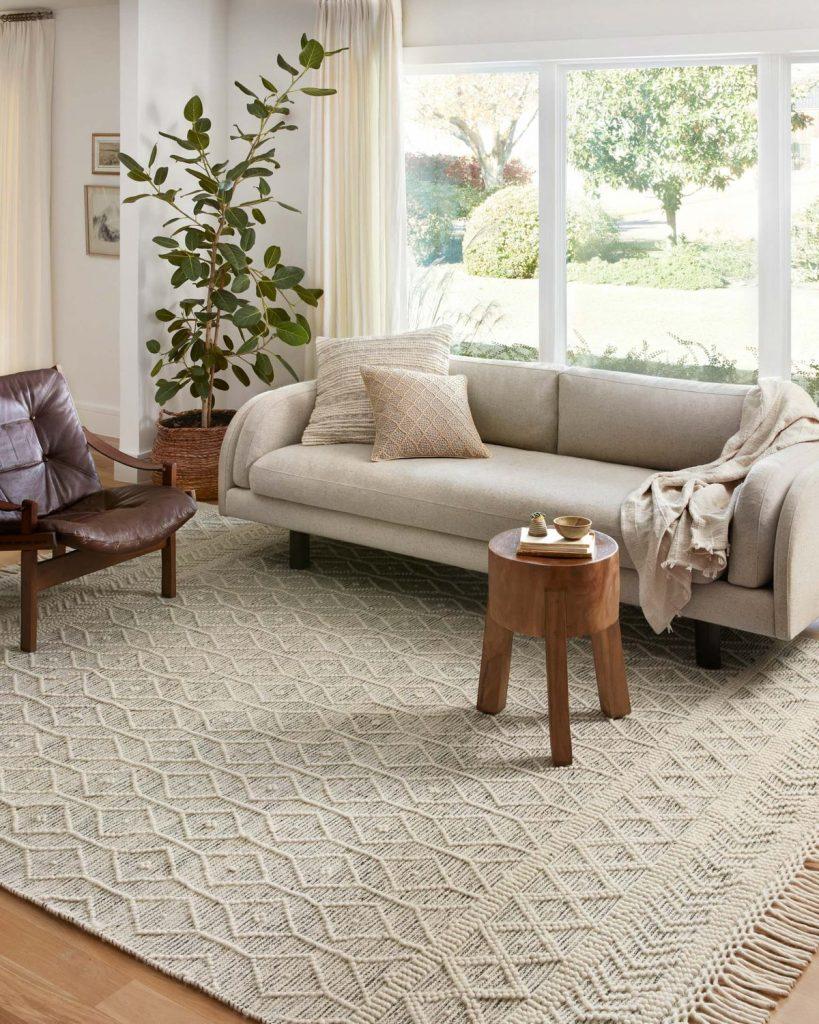 noelle-area-rug-roomshot
