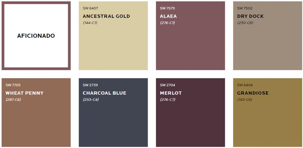 afficianado color trend